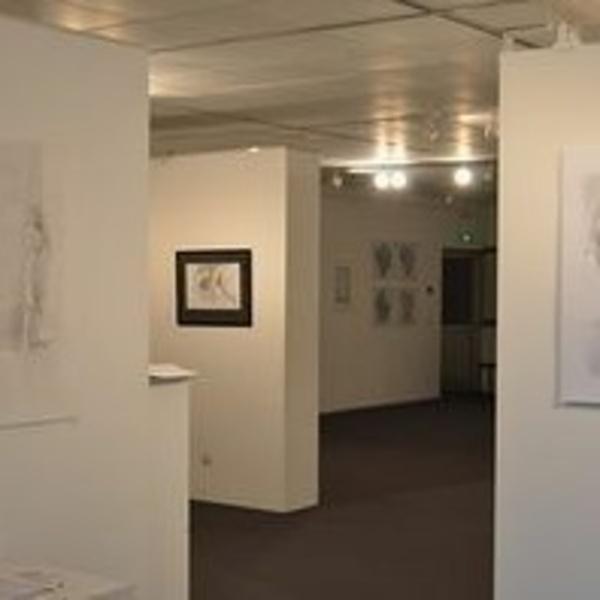 Exposition Langueux 2014